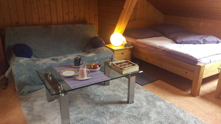 Wide double room nearby Nürnberg - Wendelstein