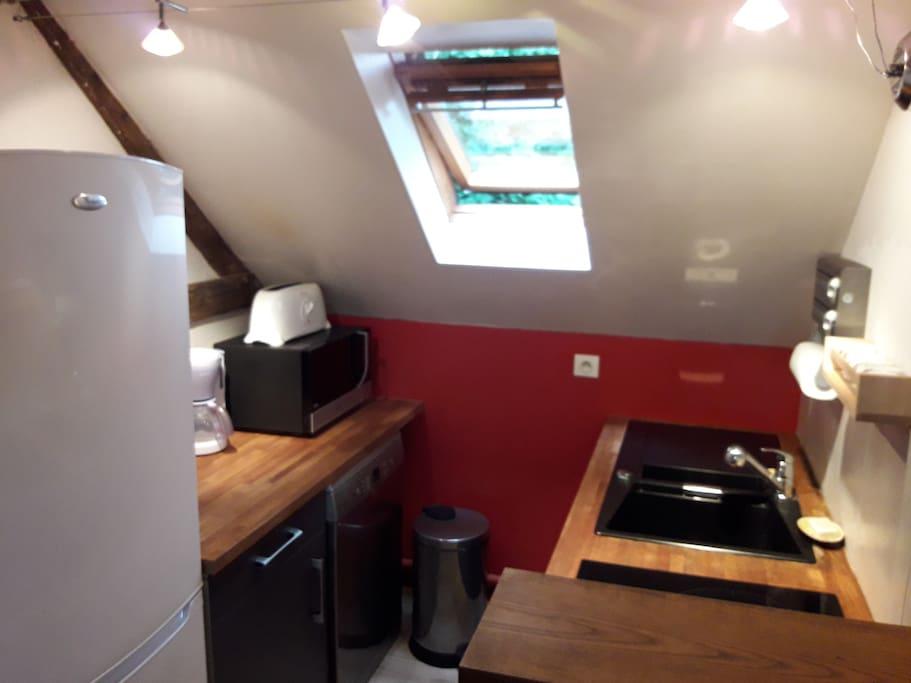 La cuisine intégré avec frigo, congélateur, lave-vaisselle, plaque induction, four/micro-ondes.