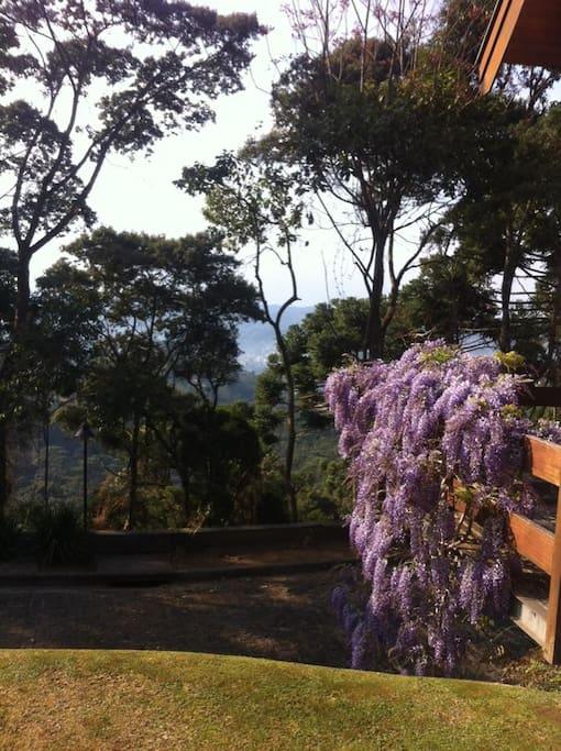 Vista jardins