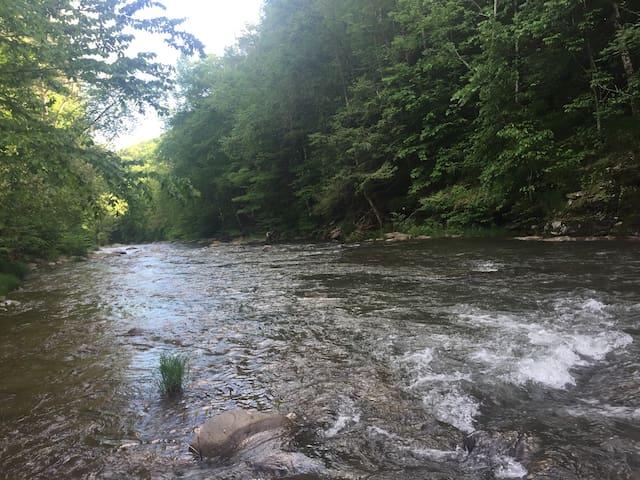 Stony Clove Creek up the block