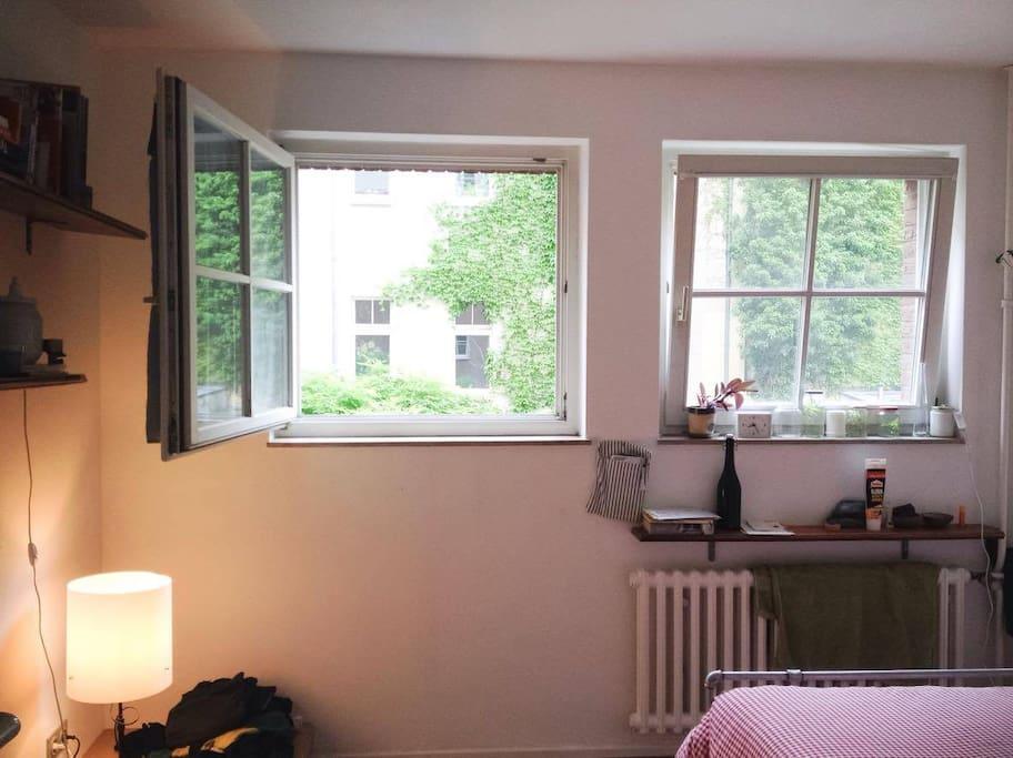 Room windows
