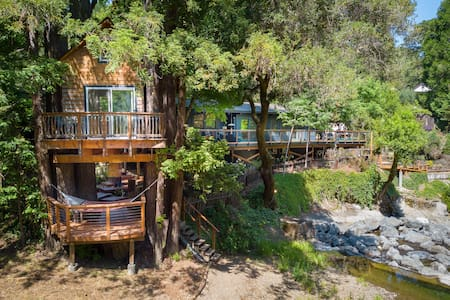 Starlight Grove - a redwood retreat