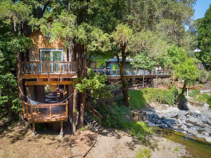 Starlight Grove-a redwood retreat (fiber internet)