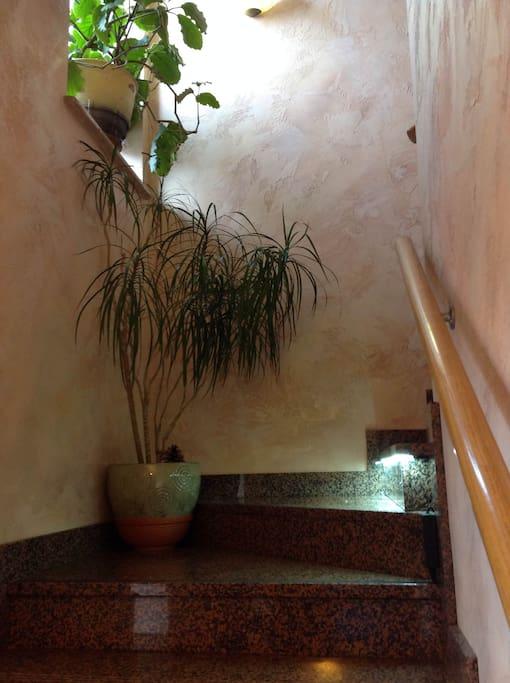 Laiptai į svečių aukštą