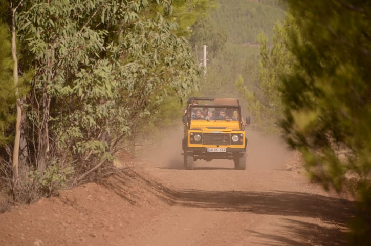 jeep safari very populer activity