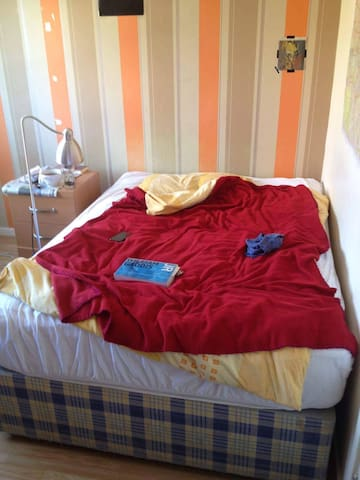 ROOM IN BETHNAL GREEN FOR THE SUMMER - London - House