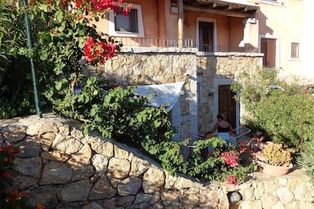 Appartement Sardinien/San Teodoro - Buddittogliu Straulas - Apartamento