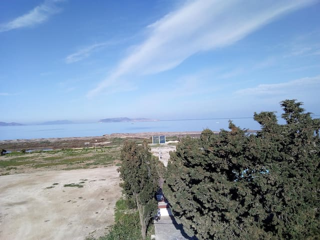 blue sea land - the terrace