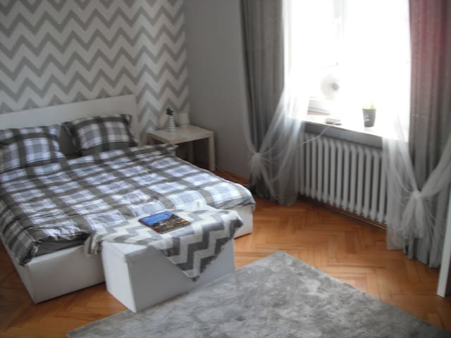 Rzeszow City Center Apartment