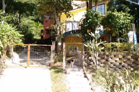 Rain Forest House