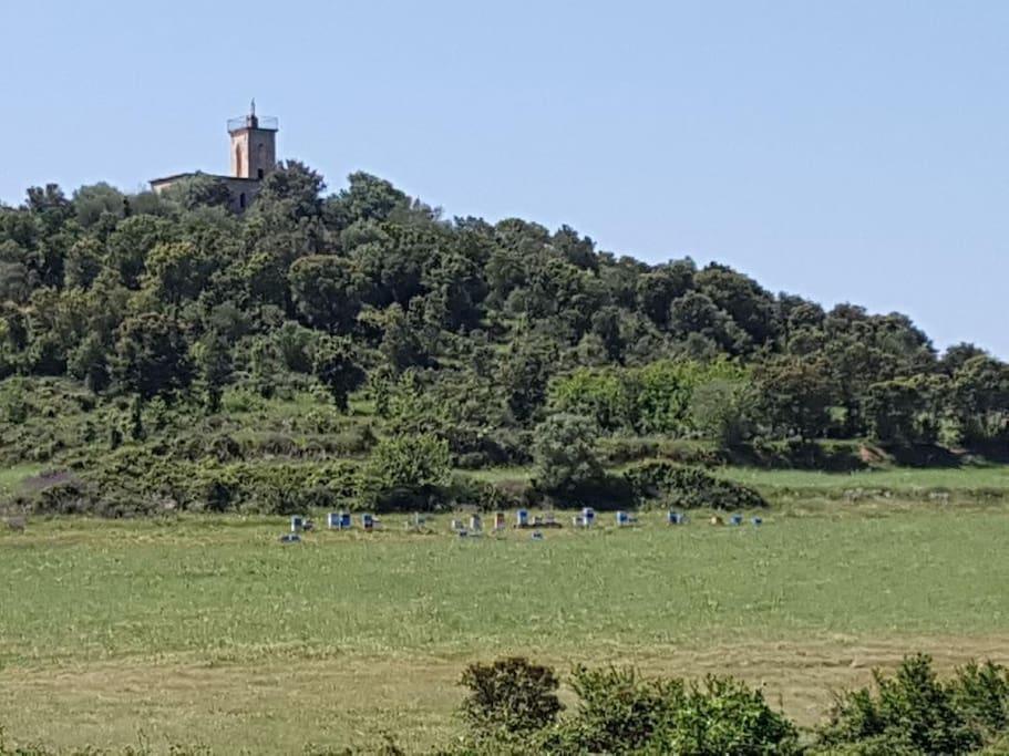 Le rucher et sa chapelle