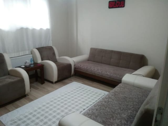 Living room with 2 sofa bed(double person)