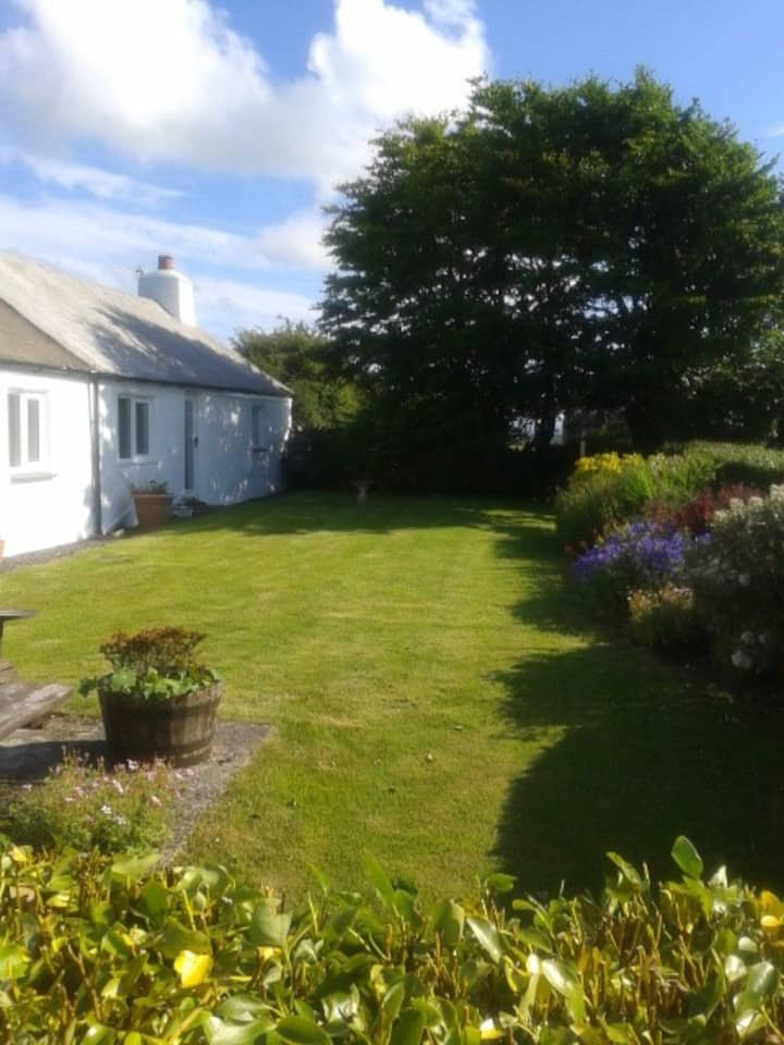 Anglesey cottage, stunning sea view, dog friendly