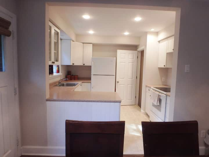 Full Basement With New Renovated Private Bathroom