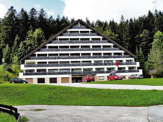 Vakantieappartement op de Sonnenalm - Bad Mitterndorf - Apartamento