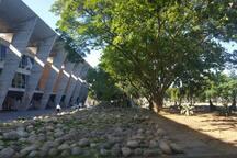 Museu de Arte Moderna (MAM), Marina da Glória e o Parque do Flamengo ficam a 20 min a pé.  Consulte nossos roteiros culturais em @almacariocaturismo.