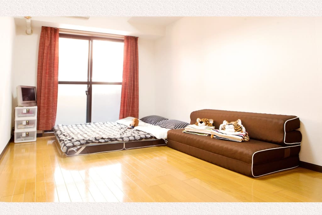 The sofa in this room can be a twin bed. 房间里的沙发床,既可以当沙发,也可以当双人床。