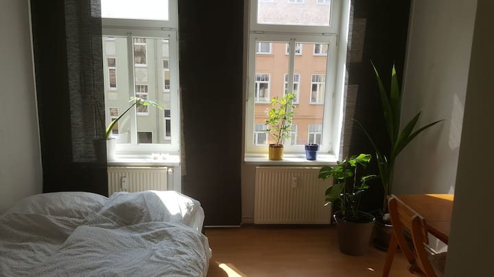 Grüne 1-Raumwohnung im Szenenviertel am Stadthafen