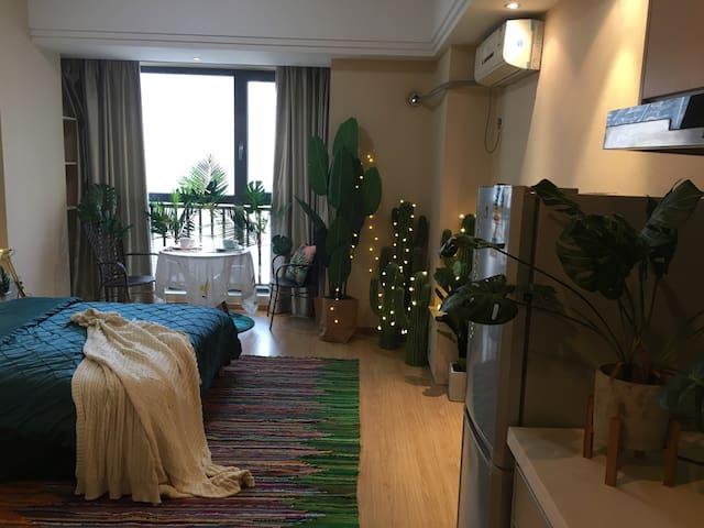 罗威森林——JXJ城市民宿  万达广场近秋水广场可以做饭的公寓