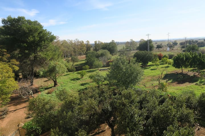 Finca en Huelva