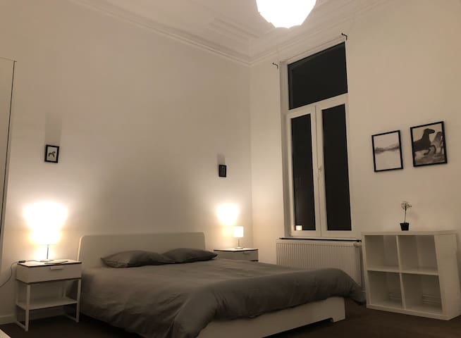 Spacious & Luxurious bedroom next to South Station