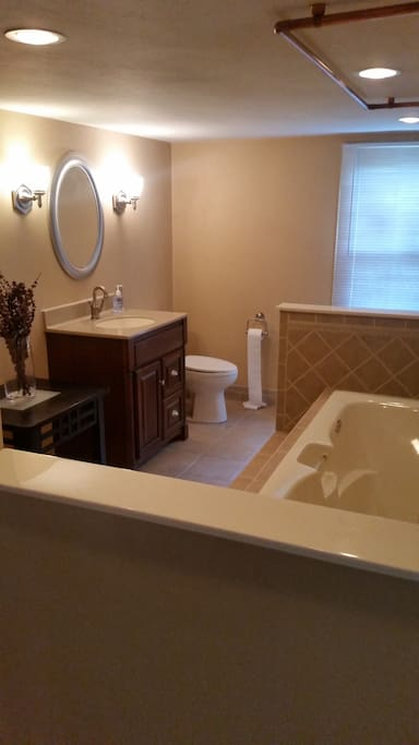 Large full bathroom with lighted, jacuzzi tub!