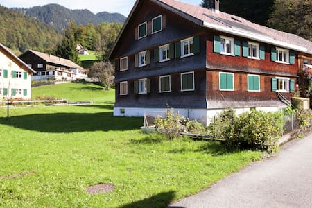 Spacious Apartment in Bizau near Ski Area