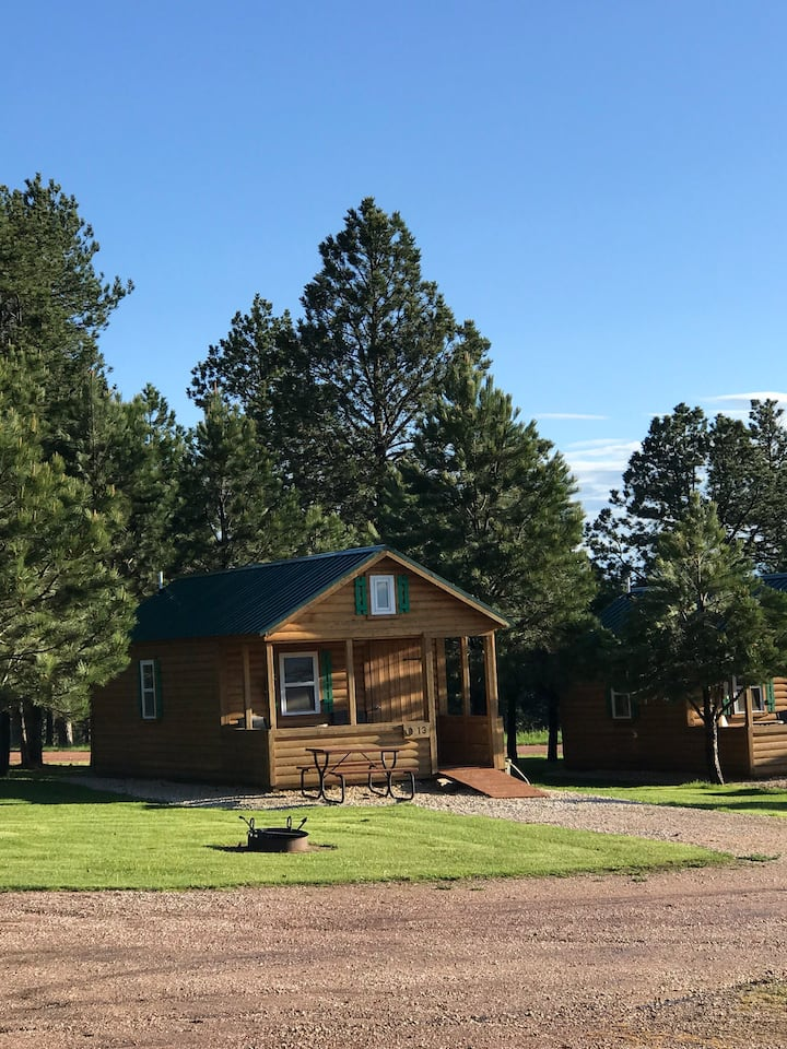 Lovely Cabin 16 near Mt.Rushmore & Custer, SD.