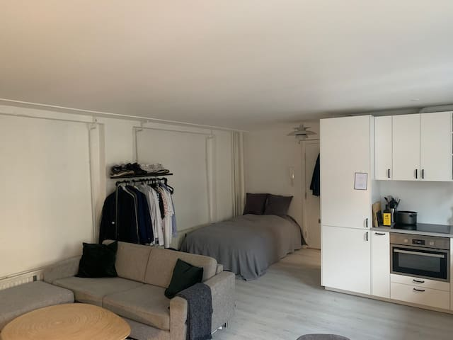 Cozy studio appartment in the middle of Vesterbro