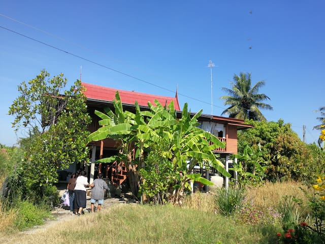 Baandab Country House, Ang-Thong