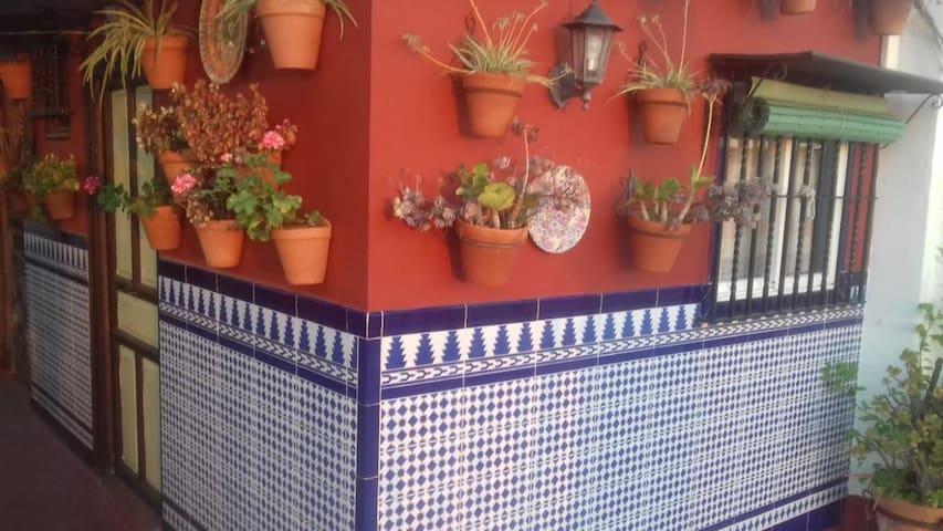 Sevilla Centro. Dormitorio en piso compartido.