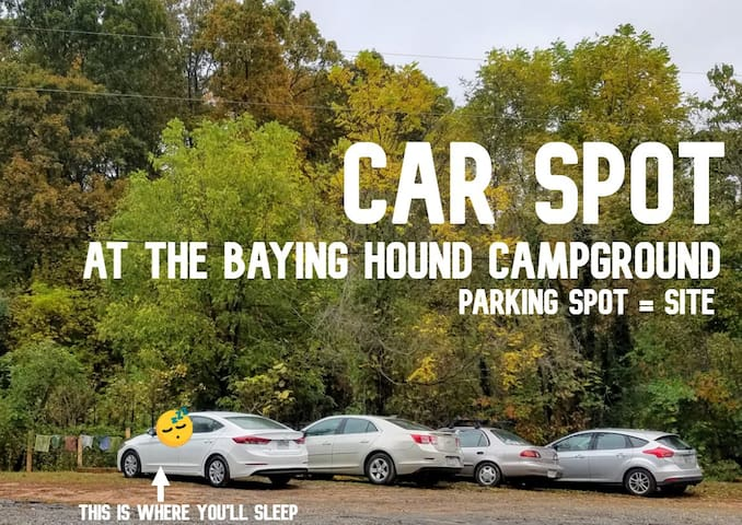 Car Spot at The Baying Hound Campground