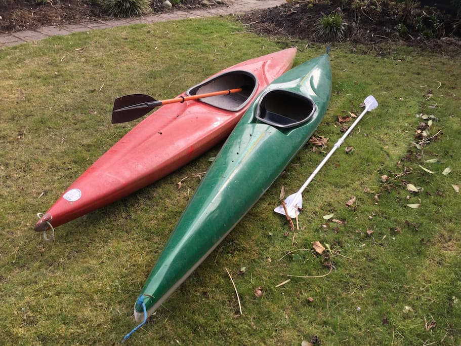 We have 2 kayaks for you!