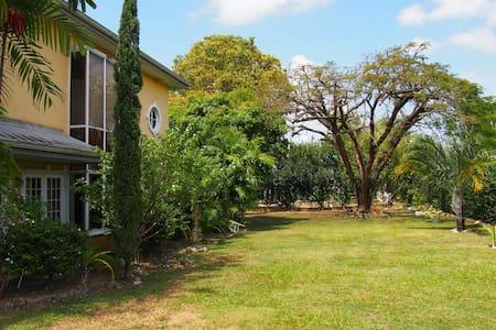 En-suite room 1 & serene gardens near the airport