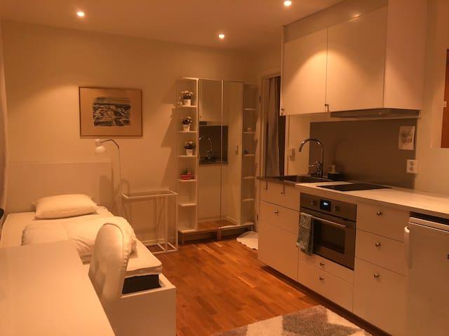 Central liten lägenhet