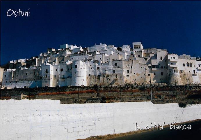 The Blue House - Rosa Marina/Ostuni - Rosa Marina - Rumah
