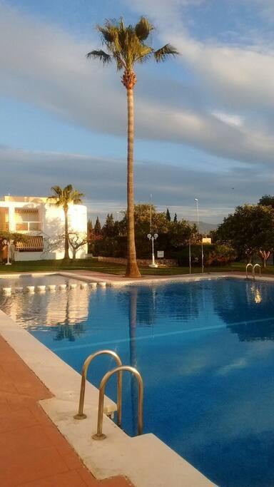 Estar en una amplia piscina y jardin con preciosa vista al mar