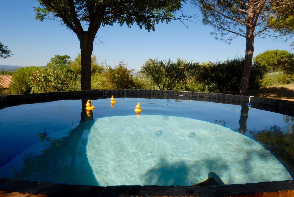 2M Plunge pool to cool off in with a glass of wine and fantastic view.