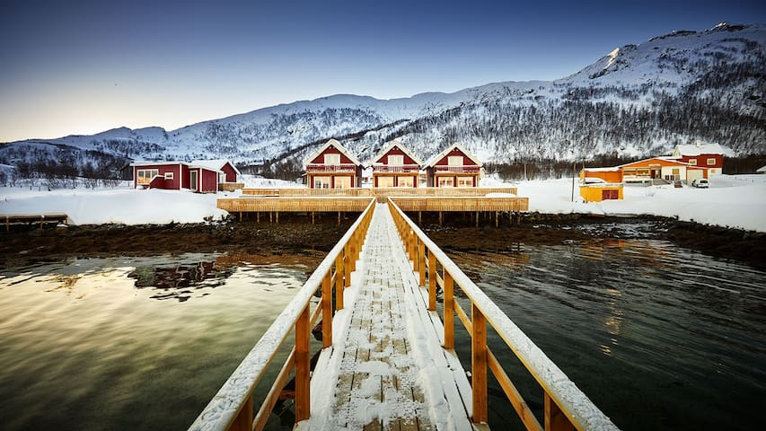 Sea lodges with Northern Lights view - Lodge 3