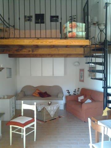 Luxury Loft - Il Meloncino - Vasanello - Loteng Studio