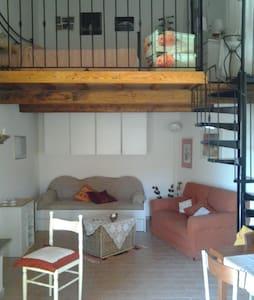 Luxury Loft - Il Meloncino - Vasanello - Çatı Katı
