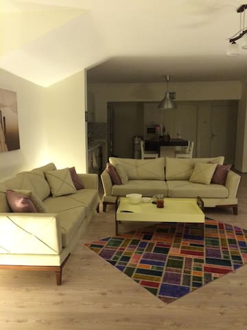 Modern, open plan, city centre, close to amenities - Çankaya - Apartament