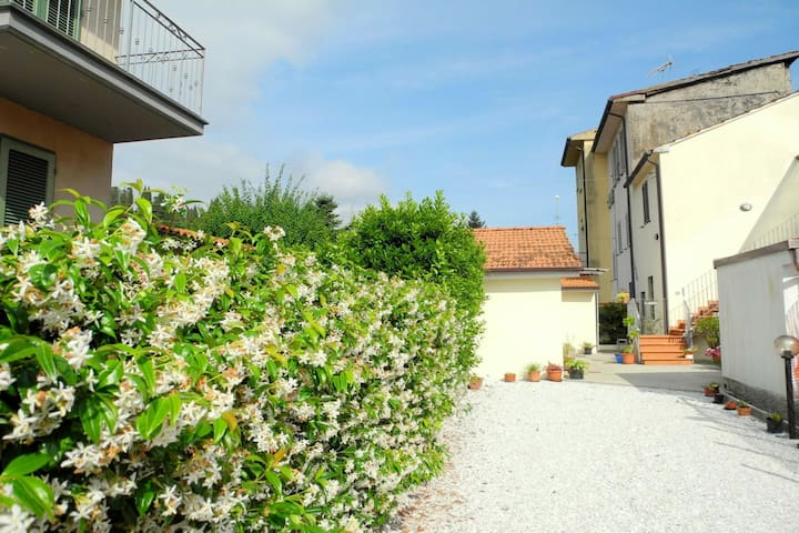 Nice holiday apartment, in a quiet area between Lucca and Camaiore
