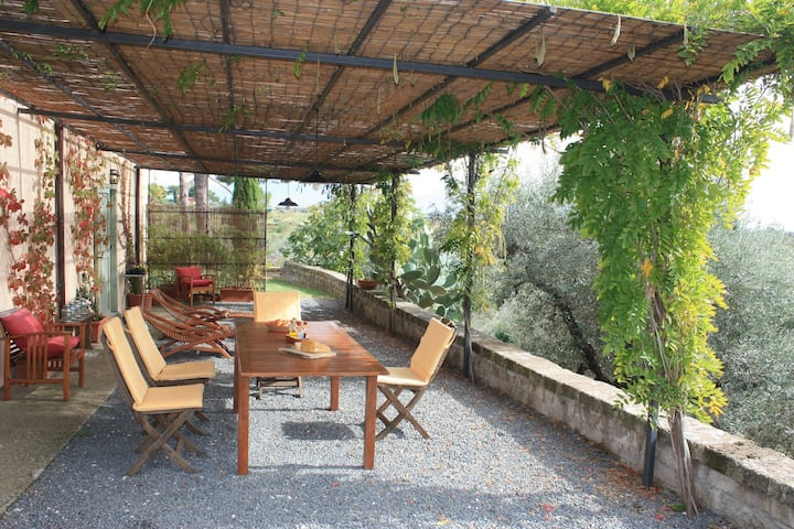 Glicine - in Vigna Luisa Resort, nahe bei Rom