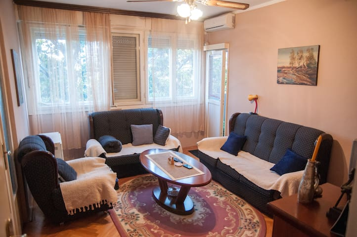 Nice and cheap place near bus and train station! - Podgorica - Pis