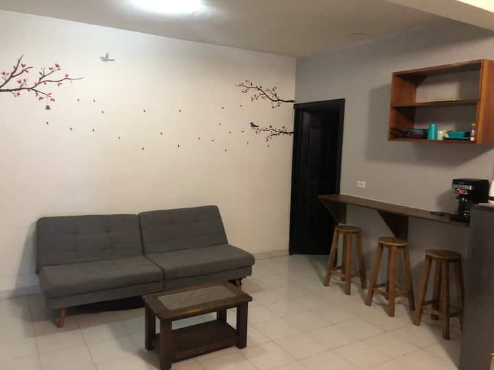 Departamento con terraza  (hospedaje sanitizado)