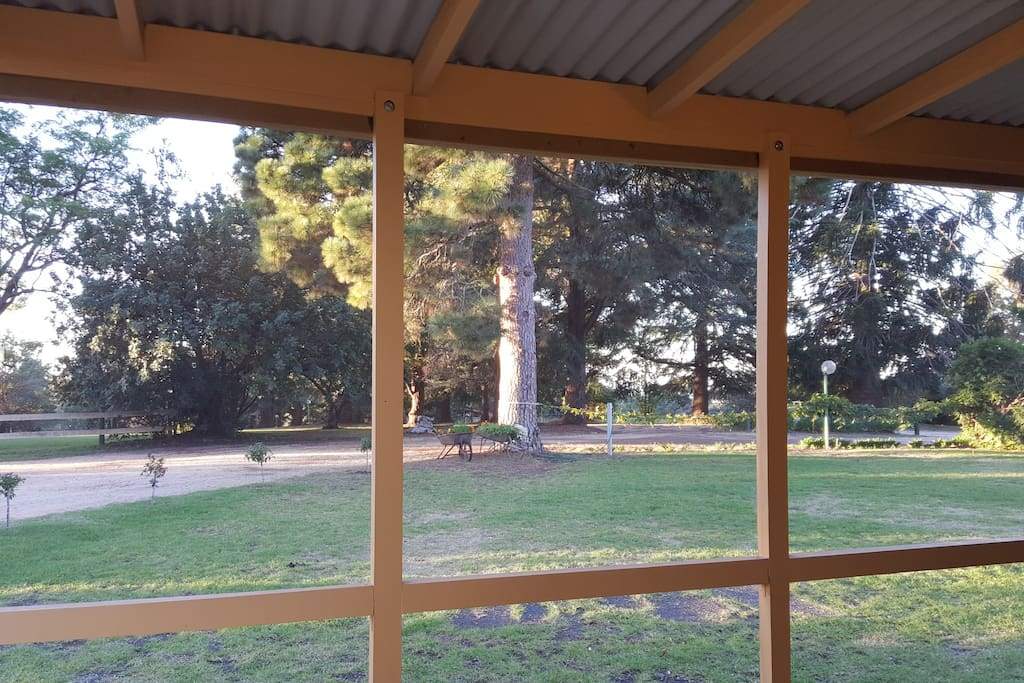 View through the screened verandah to the grounds