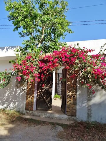 Aravali House - Rural Retreat (room only) - Pushkar - Bungalow