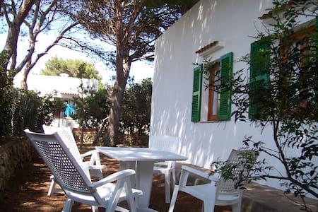 ES PINS 2, Acogedor apto a cinco min. de la playa. - Ciutadella de Menorca - Huoneisto