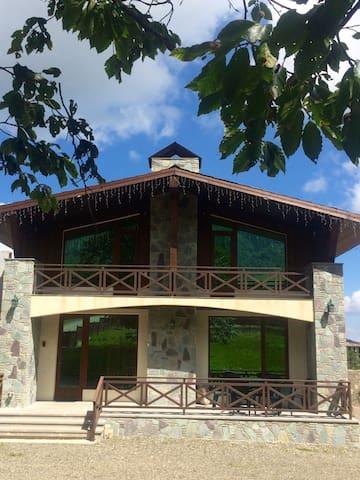 Villa Energy in Bakuriani (Didveli) - Bakuriani - House